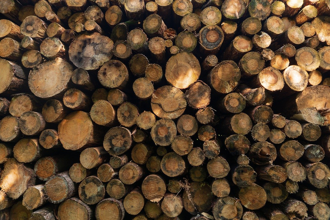 Aemetis has received a second patent for technology that allows for the generation of low carbon intensity renewable fuels from waste wood feedstocks.