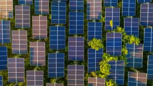 Pathway to net-zero emissions by 2050