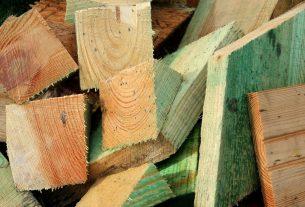SFU biomass plant transforms wood waste into energy